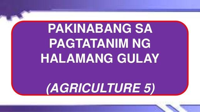 PAKINABANG SA PAGTATANIM NG HALAMANG GULAY (AGRICULTURE 5) 1