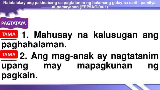 PAGTATAYA ___ 1. Mahusay na kalusugan ang paghahalaman. ___ 2. Ang mag-anak ay nagtatanim upang may mapagkunan ng pagkain....