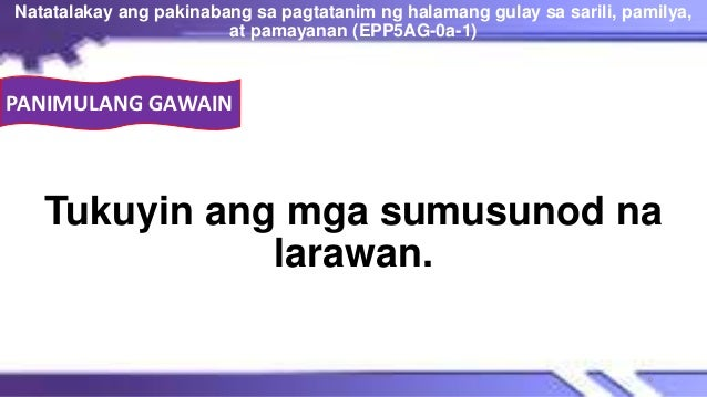 Tukuyin ang mga sumusunod na larawan. Natatalakay ang pakinabang sa pagtatanim ng halamang gulay sa sarili, pamilya, at pa...
