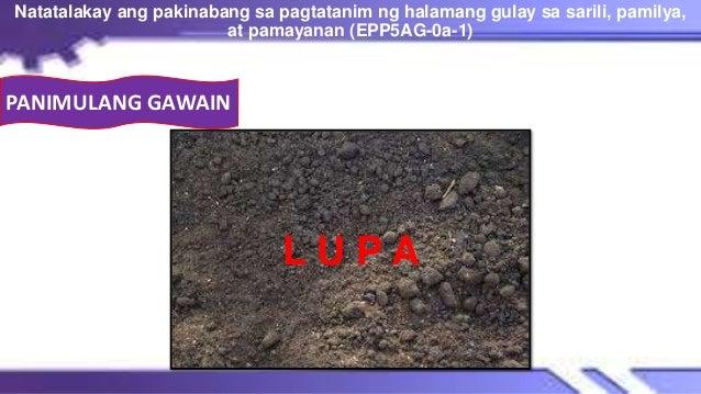 L U P A Natatalakay ang pakinabang sa pagtatanim ng halamang gulay sa sarili, pamilya, at pamayanan (EPP5AG-0a-1) 8 PANIMU...