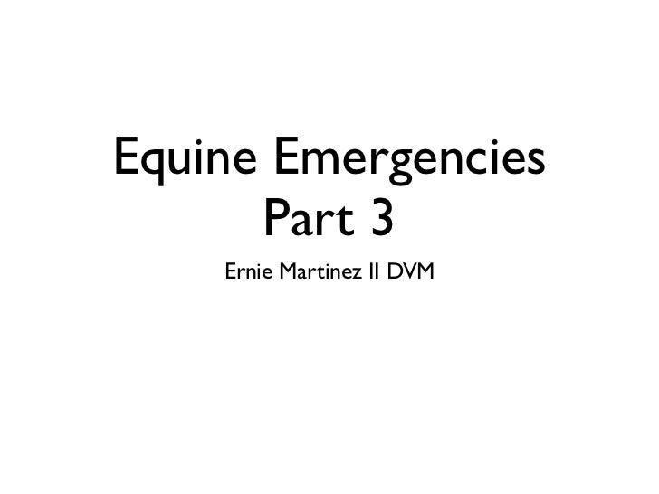 Equine Emergencies      Part 3    Ernie Martinez II DVM