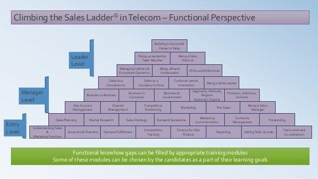 Climbing the Sales Ladder© inTelecom – Functional Perspective Market Research Understanding Sales & Marketing Function Acc...