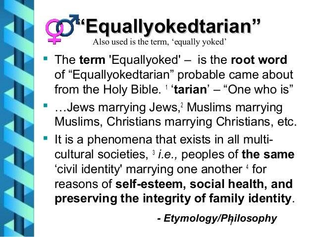 social studies definition