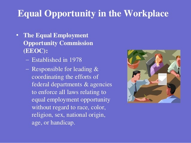 equal opportunities legislation essay The united states has developed the equal employment opportunity  commission, also known as the eeoc, to enforce laws that help prevent  everyone from.