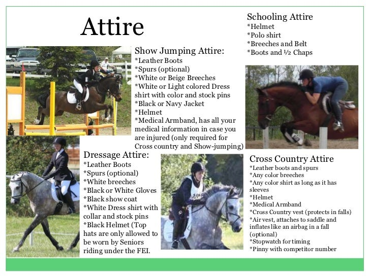 Equestrian 3 Day Eventing Powerpoint
