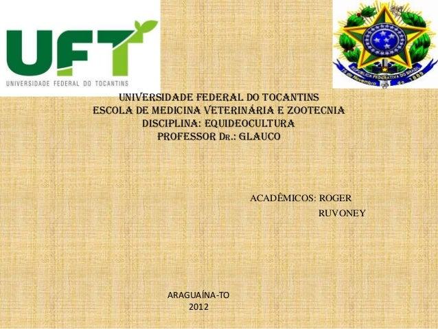 UNIVERSIDADE FEDERAL DO TOCANTINS ESCOLA DE MEDICINA VETERINÁRIA E ZOOTECNIA DISCIPLINA: EQUIDEOCULTURA PROFESSOR Dr.: gla...