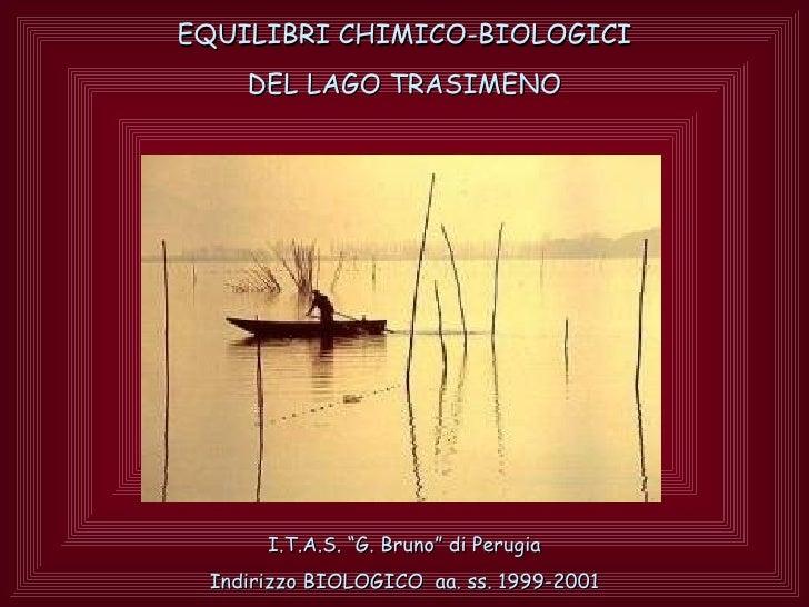 """EQUILIBRI CHIMICO-BIOLOGICI    DEL LAGO TRASIMENO      I.T.A.S. """"G. Bruno"""" di Perugia Indirizzo BIOLOGICO aa. ss. 1999-2001"""