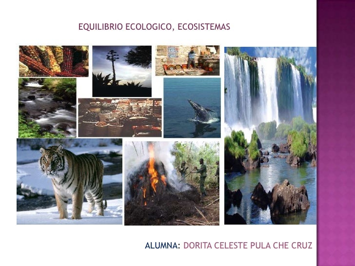 Equilibrio ecologico