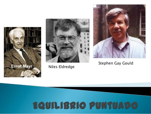 Niles Eldredge Stephen Gay Gould