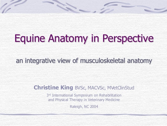 Equine Anatomy in Perspective an integrative view of musculoskeletal anatomy Christine King BVSc, MACVSc, MVetClinStud 3rd...