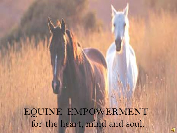 EQUINE  EMPOWERMENT <br />   for the heart, mind and soul.<br />