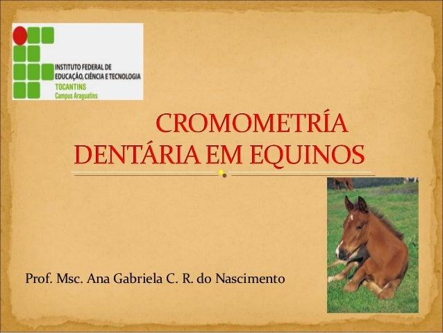 Prof. Msc. Ana Gabriela C. R. do Nascimento