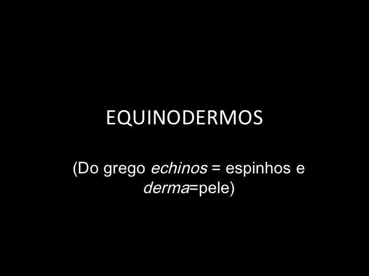EQUINODERMOS(Do grego echinos = espinhos e         derma=pele)