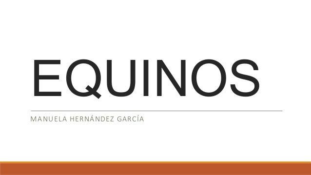EQUINOS MANUELA HERNÁNDEZ GARCÍA