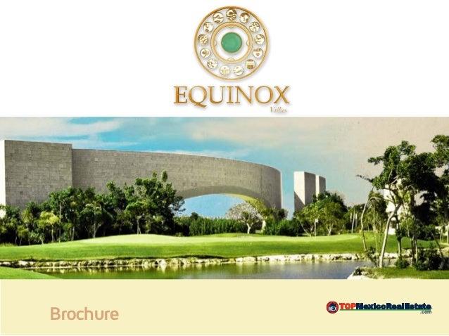 Brochure   MEX   .com                        MEX   .com