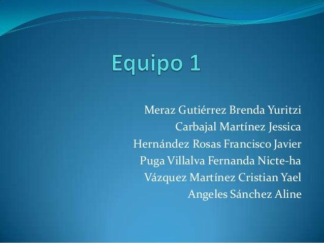 Meraz Gutiérrez Brenda YuritziCarbajal Martínez JessicaHernández Rosas Francisco JavierPuga Villalva Fernanda Nicte-haVázq...