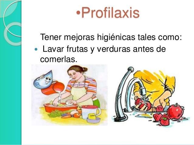 Retortamonas intestinalis - Frutas para ir al bano ...