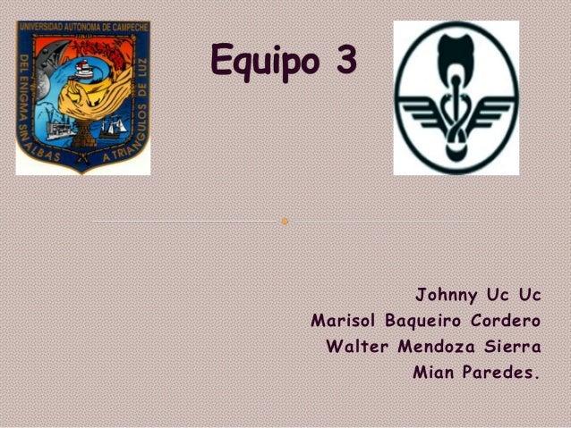 Johnny Uc Uc Marisol Baqueiro Cordero Walter Mendoza Sierra Mian Paredes.