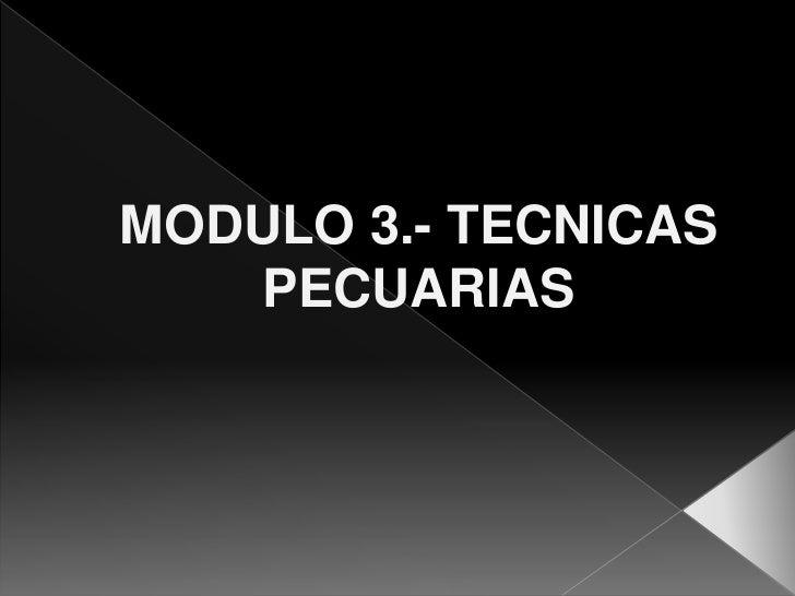 MODULO 3.- TECNICAS   PECUARIAS