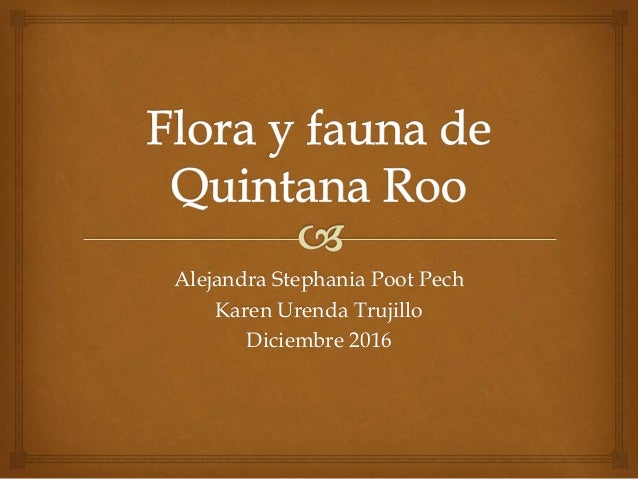 Alejandra Stephania Poot Pech Karen Urenda Trujillo Diciembre 2016