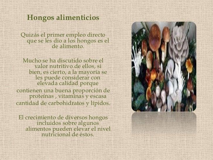 Hongos alimenticios<br />Quizás el primer empleo directo que se les dio a los hongos es el de alimento. <br />Mucho se ha ...