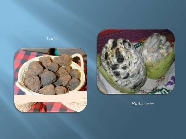 Trufas<br />Huitlacoche<br />