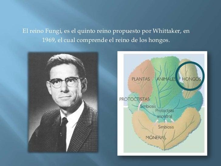 El reino Fungi, es el quinto reino propuesto por Whittaker, en <br />1969, el cual comprende el reino de los hongos.<br />