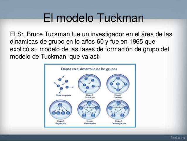 comparison between tuckman and belbin essays I have experienced the same the role of every member in my team belbin makes a difference between two terms more about belbin essay examples.