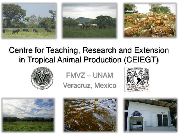CEIEGT – FMVZ – UNAM     DS – WHW – UNAM ProjectMartinez de la Torre, Veracruz, Mexico                                    ...