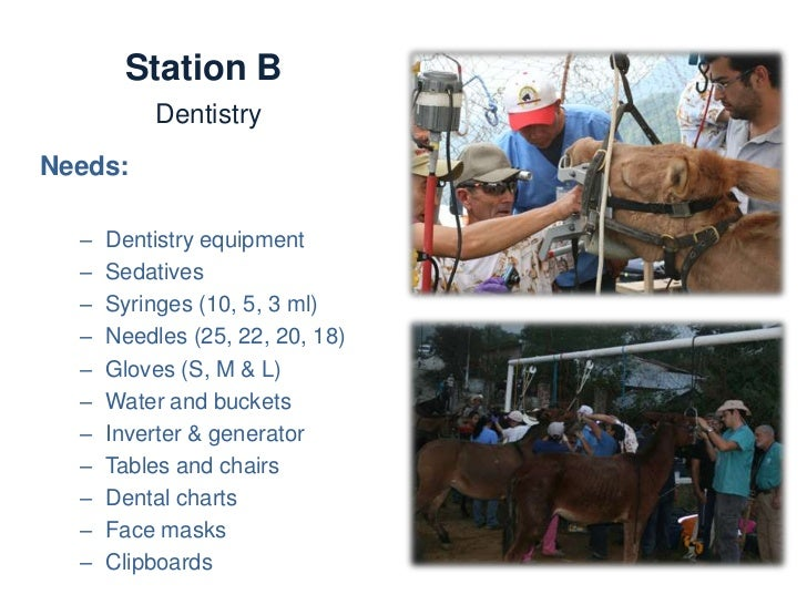 Station B Dentistry        Activities:             •   Identifying signs of oral discomfort             •   Dental and mal...
