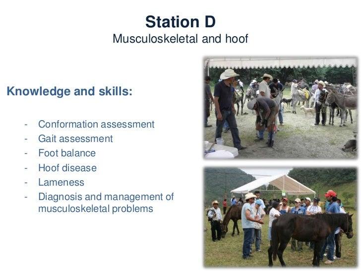 Station E  Medicine and ReproductionTrainers:   -   Dr. Julie Wilson (USA)   -   Dr. María Masri D. (Mex)   -   Dr. Héctor...