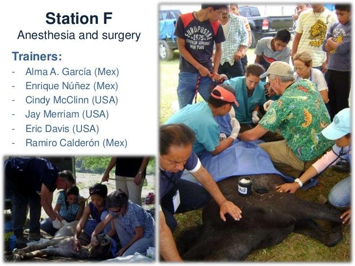 Station F           Anesthesia and surgeryNeeds:  -   Syringes, needles   -   Stethoscope  -   Gloves              -   Cat...