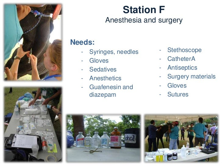 Station FAnesthesia and SurgeryNeeds:   -   Emasculators   -   Towels   -   Bandage materials   -   Sterile fluids   -   R...