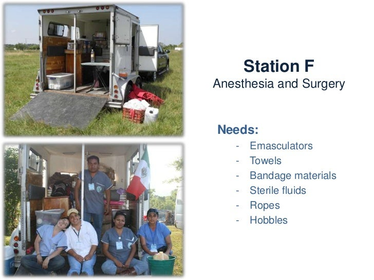 Station F       Anesthesia and surgeryActivities:   -    Field anesthesia   -    Field surgery             - Castration   ...