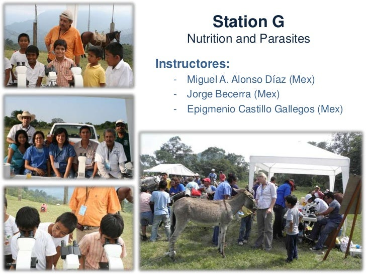 Station GNutrition and ParasitesNeeds:  –   Tables and chairs  –   Microscopes  –   Materials for diagnosis  –   McMaster ...
