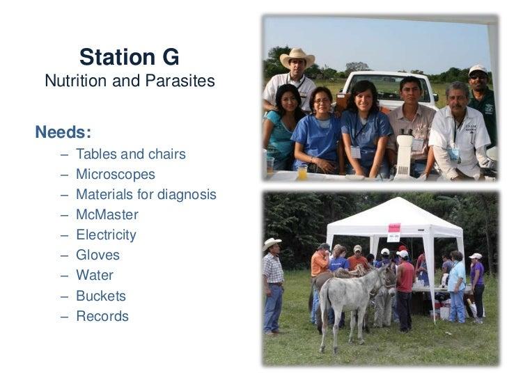 Station G     Nutrition and ParasitesActivities:-   Sampling-   Parasite diagnosis-   Identifying internal and external   ...