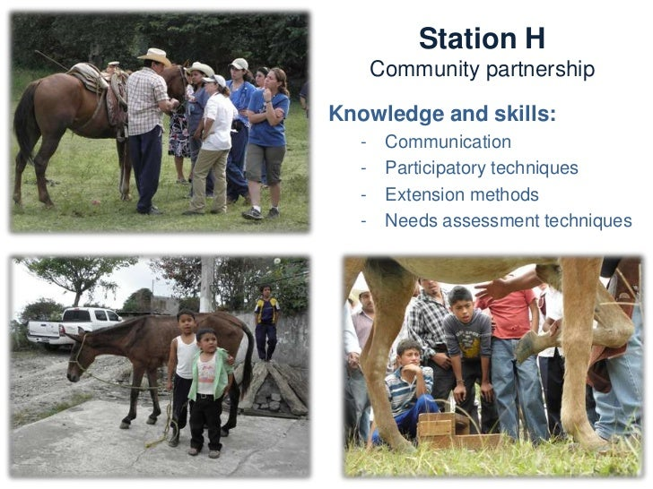 STATIONS AND TEAMS                  (Summary)          Stations                    TeamsA   Welfare, handling and recordin...
