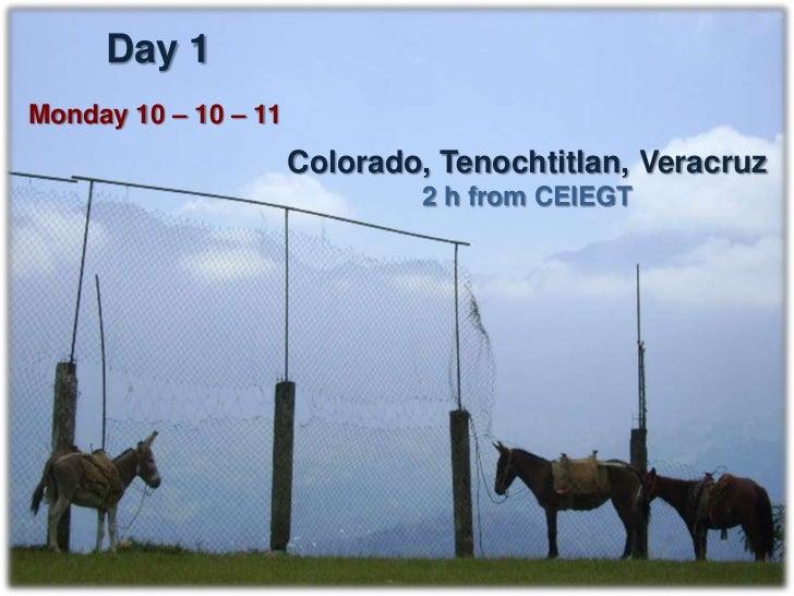 Colorado, Tenochtitlan, Ver.                   Donkeys   Horses   Mules   TOTALExpected animals     40        40      40  ...