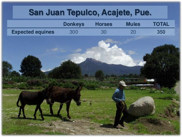 Tuesday October 11th, 2011    Hour           Place              Activity                  San Juan11:00 – 17:00           ...