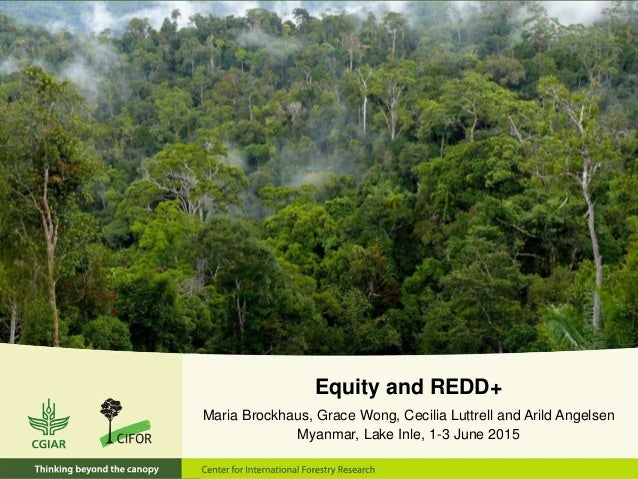 Equity and REDD+ Maria Brockhaus, Grace Wong, Cecilia Luttrell and Arild Angelsen Myanmar, Lake Inle, 1-3 June 2015