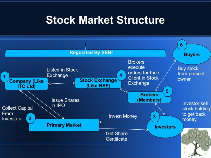 Stock options trading classes