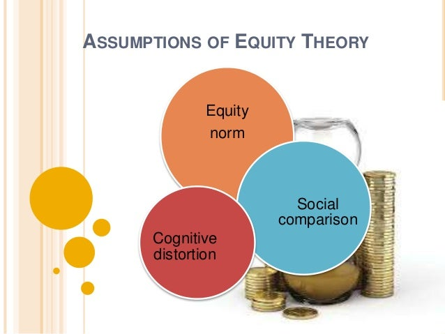 IMPLICATION  OF  EQUITY THEORY