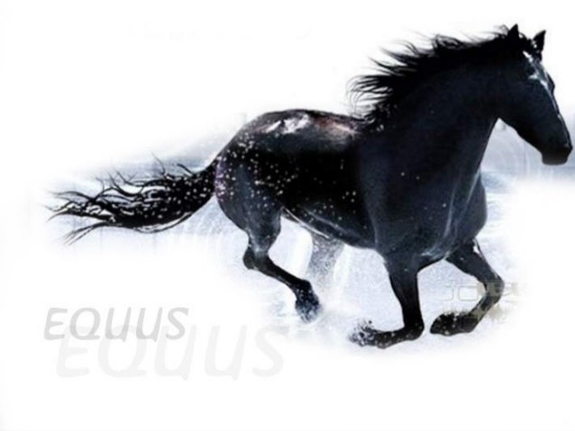 Peter Shaffer  Equus    By Prof. Jonathan Acuña-Solano
