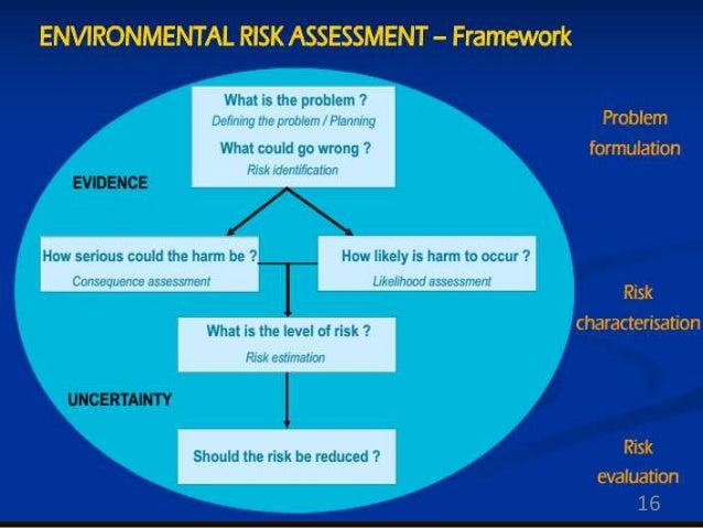 environmental risk assessment thesis Environmental risk management in municipalities of the  as a  master thesis in sustainable regional development - federal university of.