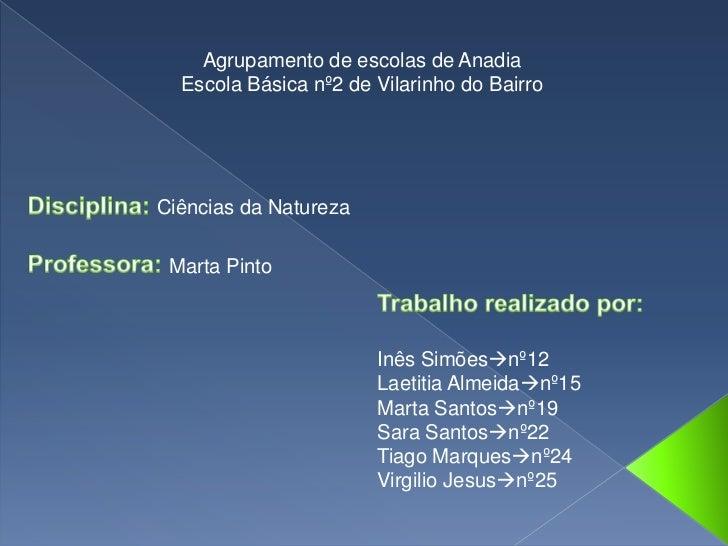 Agrupamento de escolas de Anadia<br />Escola Básica nº2 de Vilarinho do Bairro<br />Disciplina: Ciências da Natureza<br />...