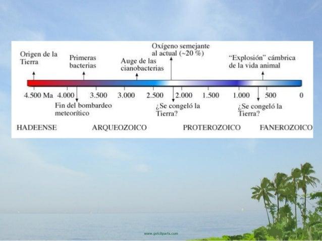Épocas geológicas de la Tierra - Profesor en línea