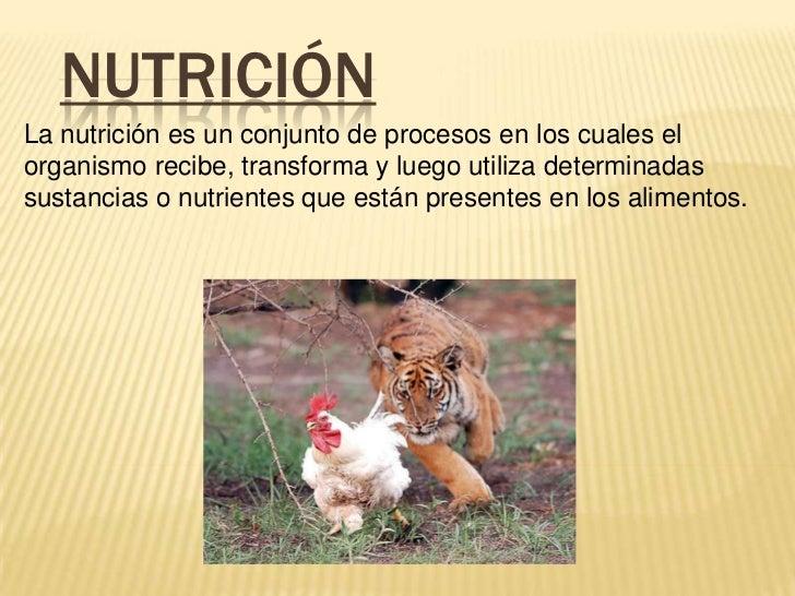 NUTRICIÓNLa nutrición es un conjunto de procesos en los cuales elorganismo recibe, transforma y luego utiliza determinadas...