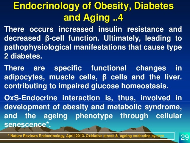 oxidative stress and insulin action is there a relationship