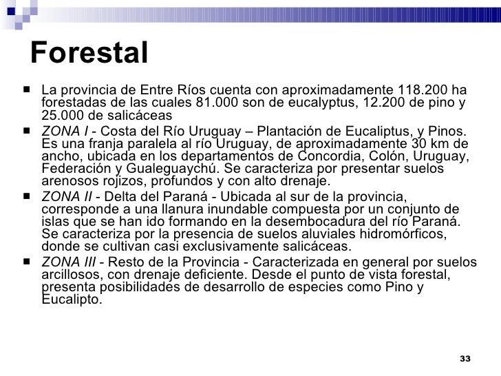 Entre Ríos la que ocupa el primer lugar en el NEA con el 52% de la producción