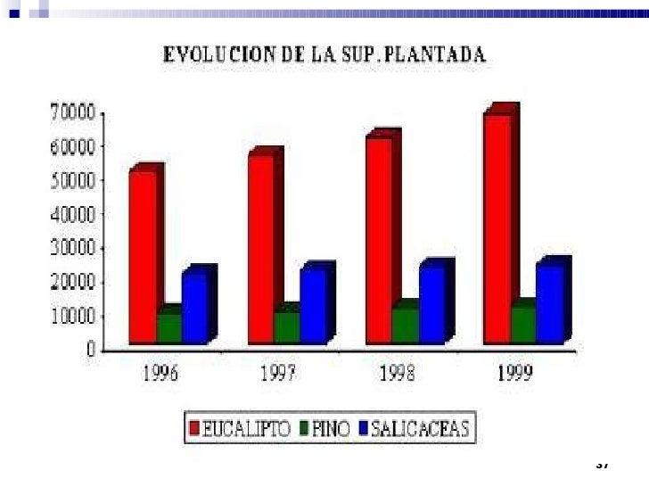 Forestal   <ul><li>La provincia de Entre Ríos cuenta con aproximadamente 118.200 ha forestadas de las cuales 81.000 son de...